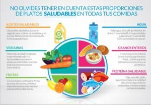 plato-saludable-e1347568052311